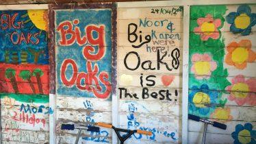 Big-Oaks-19-scaled